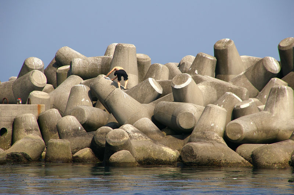 Tetrapods Japan